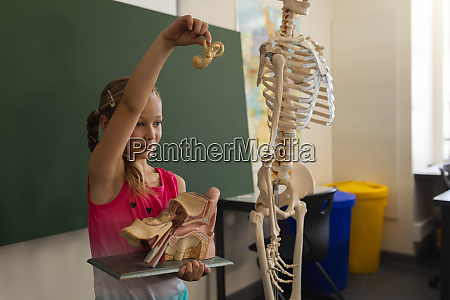 side view of schoolgirl explaining anatomical