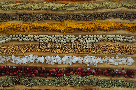 various spices arranged in row