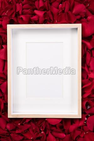 wooden frame lying on rose petals