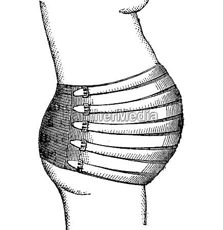 abdominal professor courty vintage engraving