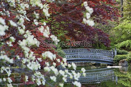stone bridge behind the foliage
