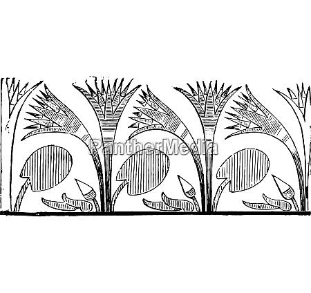 papyrus vintage engraving