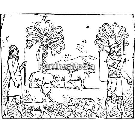 shepherds vintage engraving