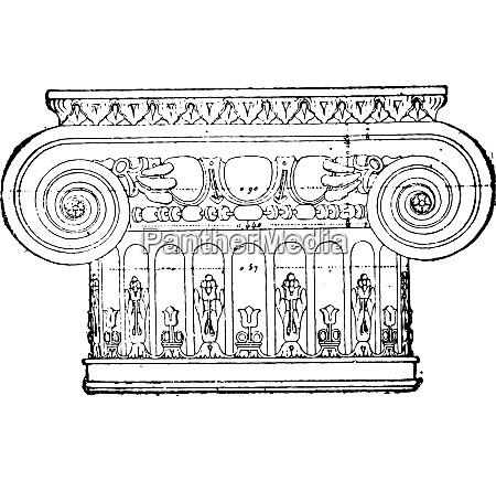 capital of renaissance period vintage engraving