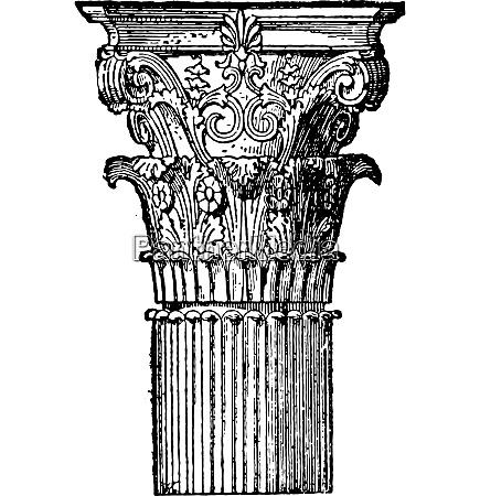 corinthian capital vintage engraving