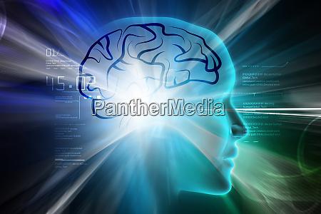 female head with brain