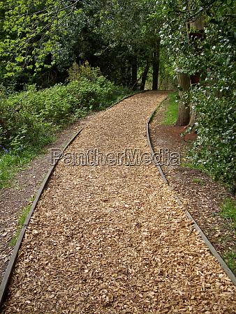 woodland woodchip path