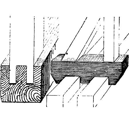 skates framework vintage engraving