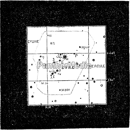 lyra constellation vintage engraving