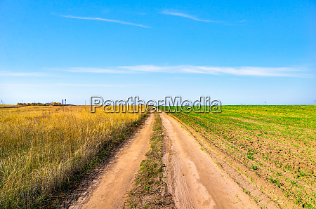 country road through field