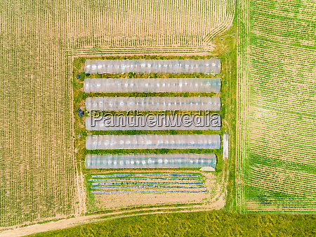 aerial view of plastic greenhouses in