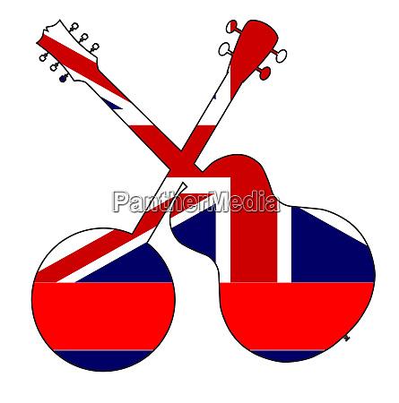 hawaii state flag banjo and guitar