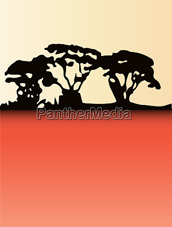 copse trees summer background