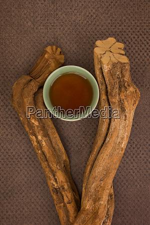 traditional visionary medicine ayahuasca