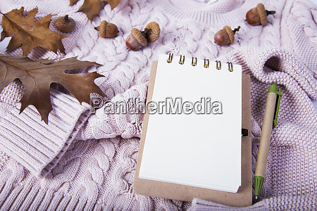 sweater with dried leaves and notebook