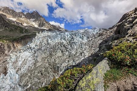 argentiere glacier in chamonix alps france