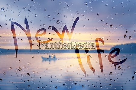 rain on glass with new life