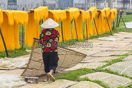 drying sheets of mien noodle nr