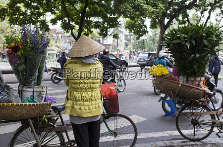 vietnam hanoi plant and flower market