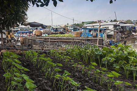 vietnam mekong delta cai rang floating