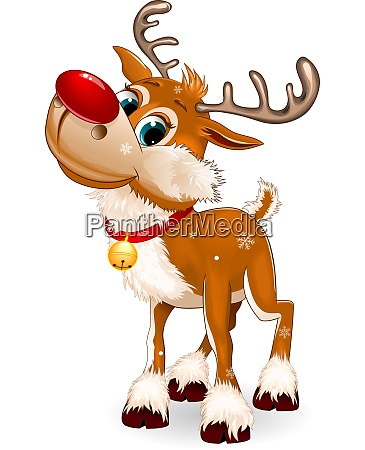 reindeer on white background