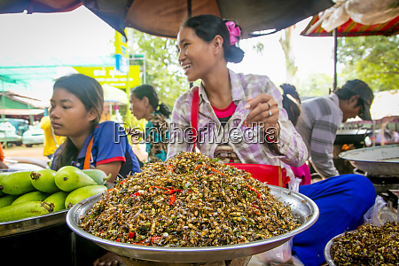 insect ant food market koh chen