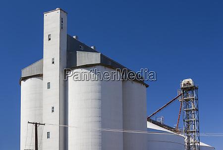 australia clare valley farrell flat grain