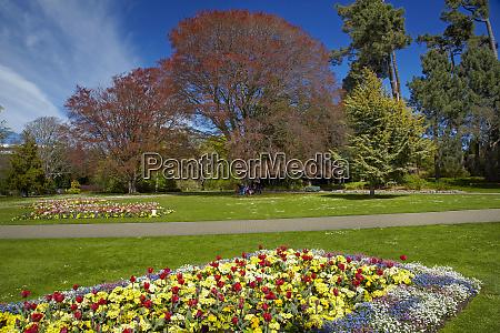 flower bed botanic gardens hagley park