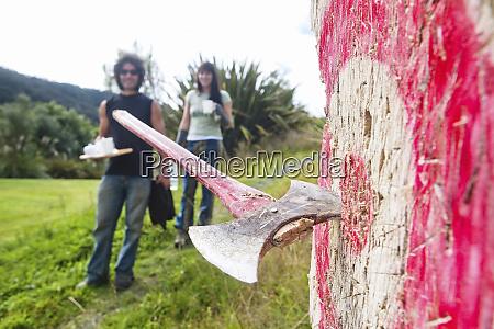 farmlands in whakahoro in the whanganui
