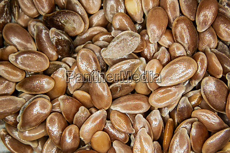 brown flax seeds under the magnifying