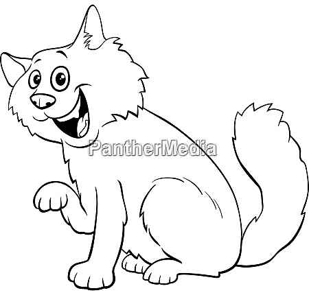 fluffy cat cartoon character coloring book
