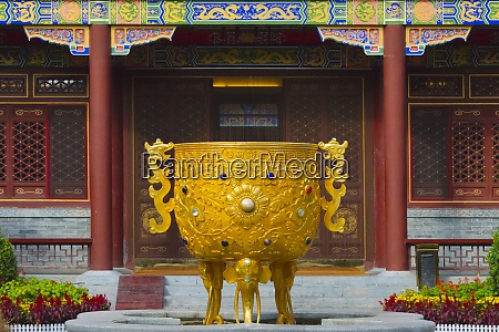 golden wine vessel in a traditional