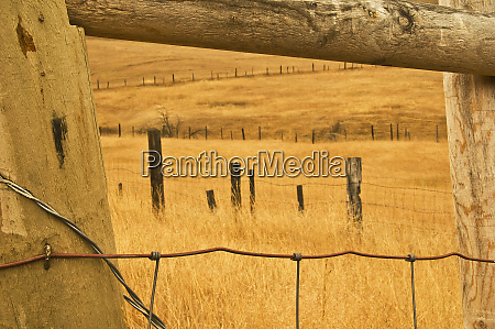 usa montana old fence framing other