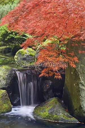 usa oregon portland waterfall and japanese