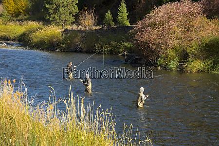 fly fishing autumn wallowa river wallowa