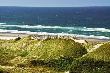 dunes on north of heceta beach