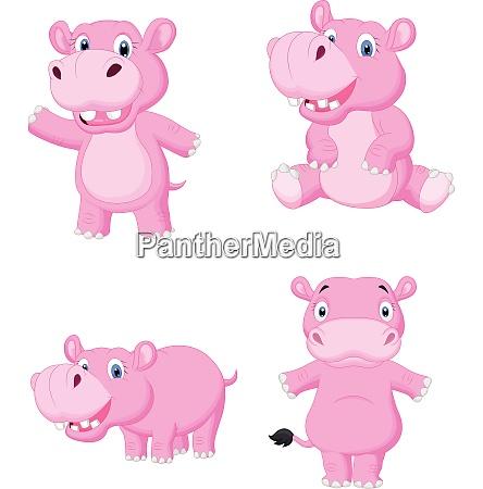 cartoon hippo collection set