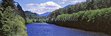 usa oregon mckenzie river the mckenzie