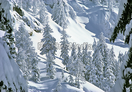 usa oregon crater lake np winter