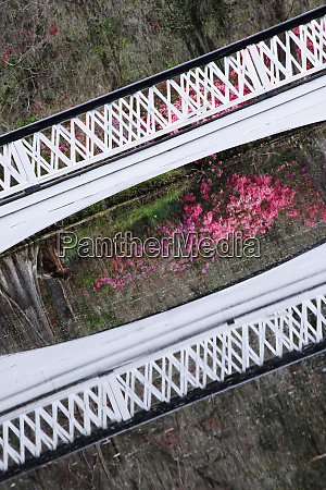 usa south carolina charleston tilted view