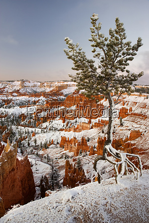 usa utah bryce canyon national park