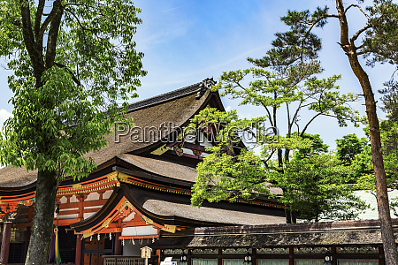 kyoto japan shinto yasaka shrine gion
