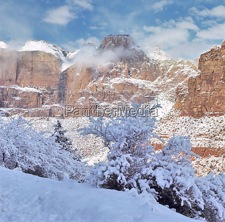 usa, , utah, , zion, np., fresh, snow - 27712651