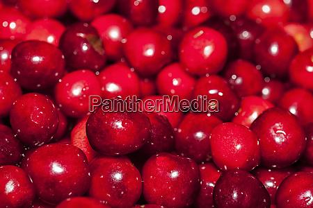 close up of cherries