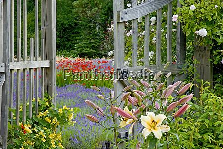 usa washington bainbridge island garden gate