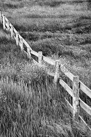 usa washington old wooden fence in