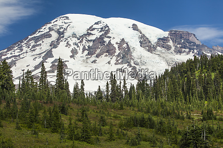 mt rainer and forested moraines as