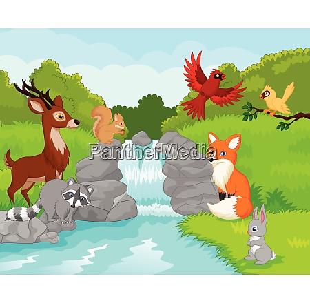 beautiful waterfall with wild animals