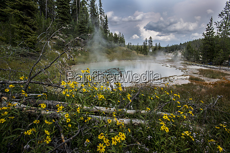 thermal pools in the backcountry of