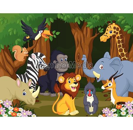 wild animal cartoon